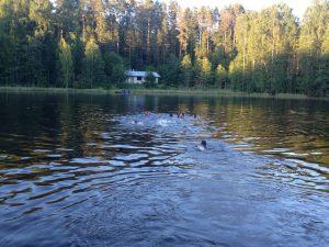 Lago en el que navegaron