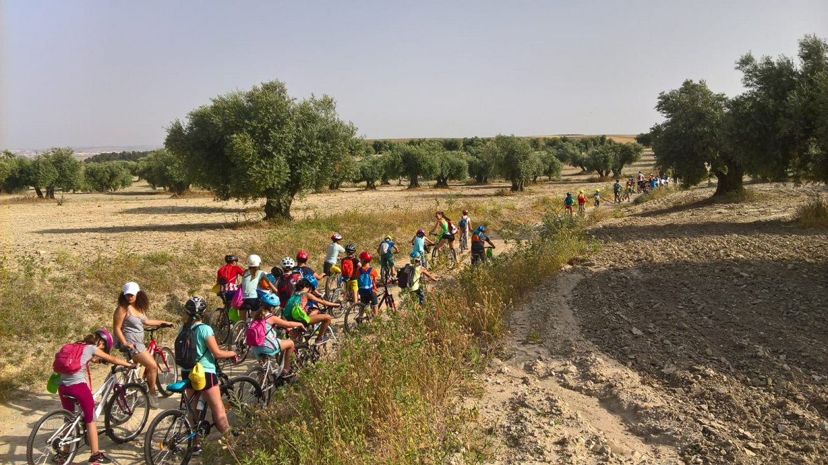 Bicicletea 2020